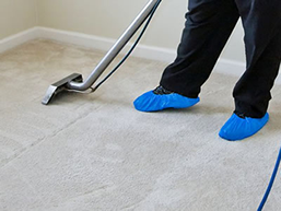 Carpet Cleaning Service Stone and Taney County